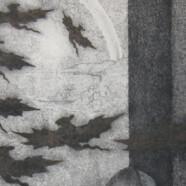 Janela Poética I
