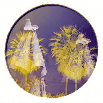 Enigmas circulares 05